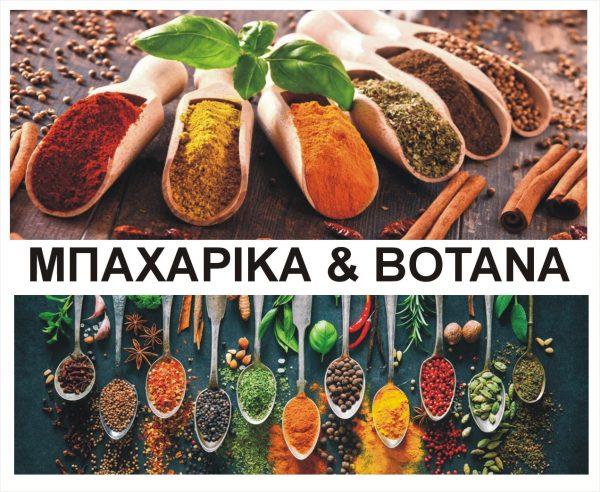 ΜΠΑΧΑΡΙΚΑ-ΒΟΤΑΝΑ-ΑΛΑΤΙ